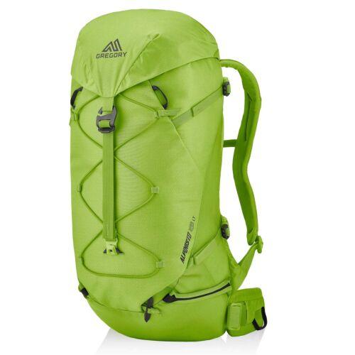 Gregory Alpinisto LT 28 Lichen Green