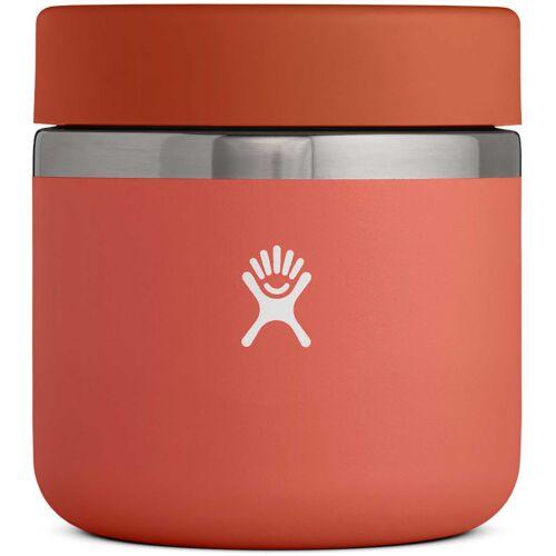 Hydro Flask Insulated Food Jar 20oz / 591ml Chili